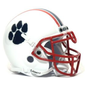 Hanover Panthers Schutt Mini Football Helmet