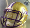 Cartersville Purple Hurricanes HS 2015 (GA) (2015