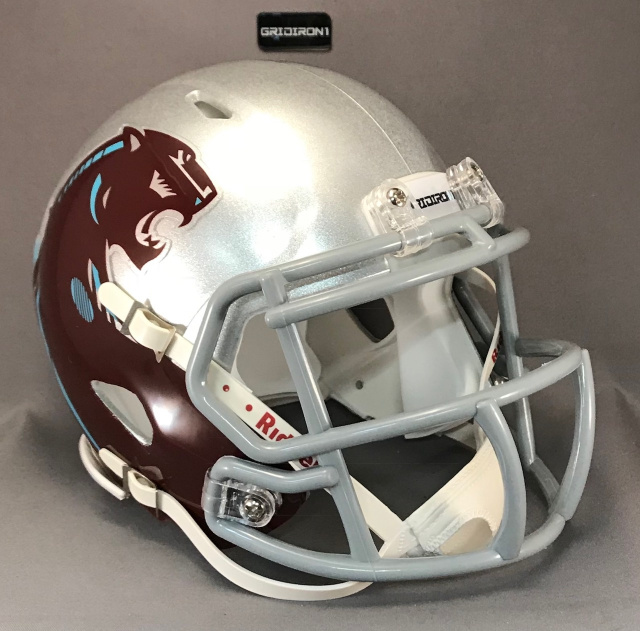 Michigan Panthers 1983 Games 1-3 Silver Helmet